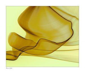 Artist VanDewerker Prize winning art at Buena Ventura Art Association 2016 Show