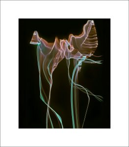 ABSTRACT PHOTOGRAPHY, BLACK PHOTOGRAPHY, MODERN FINE ART GICLEE PRINTS